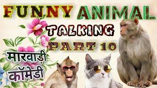 Funny Animal Talking Marwadi Version Part - 10 || देसी जानवरो की कॉमेडी जनता की भारी डिमांड पर||