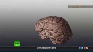 Control mental El sueño de los dueños del mundo (Daniel Stulin) 《Desde La Sombra》
