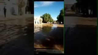 شعب يعاني ملعب تخمارت تيارت malabe tiaret