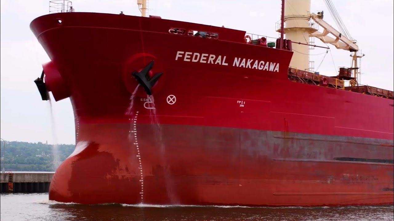 Federal Nakagawa - The Calm Before the Storm