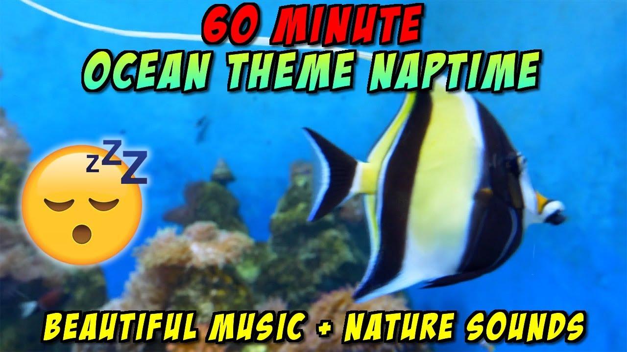 ONE HOUR PRESCHOOL NAPTIME OCEAN THEME   Relaxing music ...
