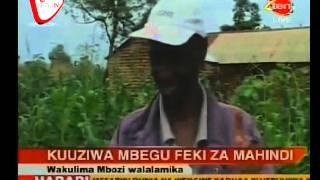 Wakulima Walalamika Kuuziwa Mbegu Feki