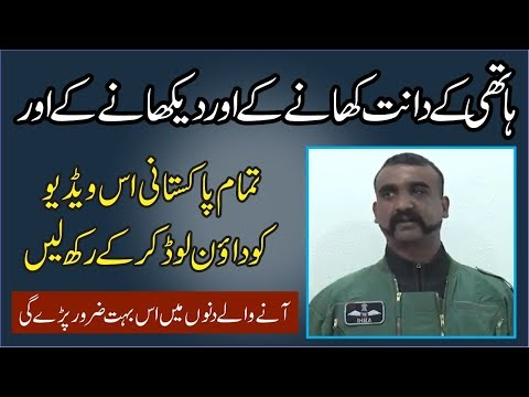 Indian pilot exclusive interview abhi nanand