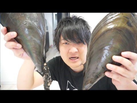 巨大貝の寄生虫を美味しいつまみに大変身!!【タイラギ】