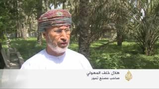 سلطنة عمان.. 7 ملايين نخلة ونقص في التمور
