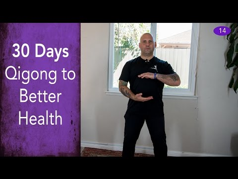 Day #14 - Renewal of Spirit Meditation - 30 Days of Qigong to Better Health