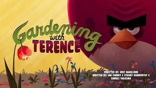 Злые птички - Энгри Бердс - Садоводство с Теренсом (S1E13) || Angry birds Toons