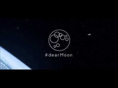Dear Moon -  SpaceX Starship First Manned Flight Project