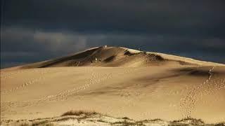 Daniel Vigletti  El Vals de la duna