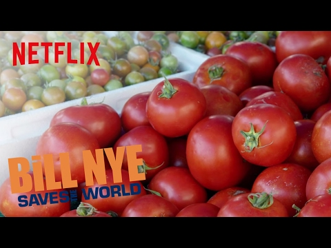 Bill Nye Saves the World tackles GMOs | Netflix