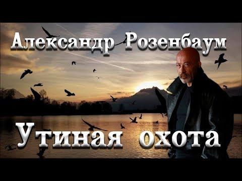 Перчатки мужские зимние купить новосибирск