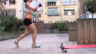 """A pigeon ruined my workout"" workout."