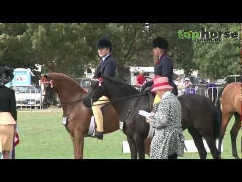 Champion Ridden Show Pony - Royal Melbourne Horse Show 2013