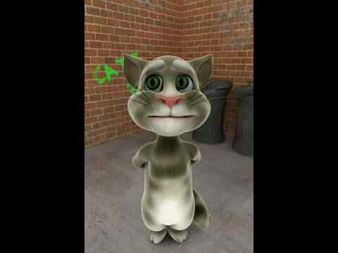 Talking Tom Cat Preaching