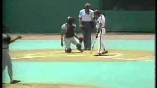 Mark Grant Umpire