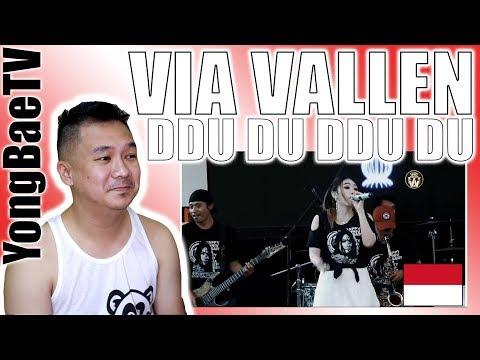 Via Vallen - Ddu Du Ddu Du (Black Pink Koplo Version) | Reaction | YongBaeTV