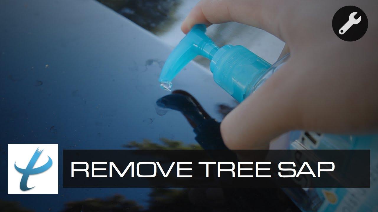 Remove Tree Sap On Car Paint