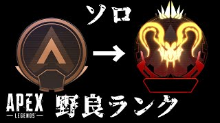 【APEX】クリプトだけでソロマスターチャレンジ!野良ランクマッチ【APEX LEGENDS/エーペックスレジェンズ/ライブ】