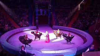 В Запорожском цирке аншлаг – премьера шоу-программа «Фата Моргана»