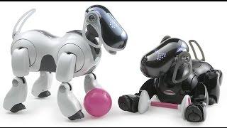 Город роботов Животные роботы Robots' city