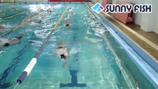 【ポイント】 ・前泳者との間隔を空けすぎず、波に乗れるように気をつけ...