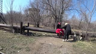 Караганда детская железная дорога собаки без намордника девушки на трубе в парке весна 2021 года