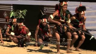 Konyak Naga - martial tribe performs at Hornbill Festival in India