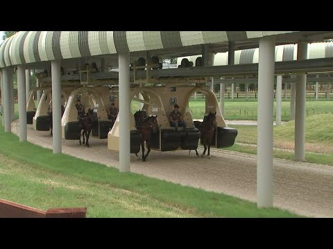 £20m jockey-less 'monorail' for horses unveiled