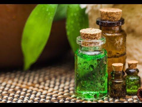 Шалфей лекарственный - лечебные свойства, применение, рецепты