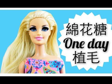 ♛[QQ]綿花糖One Day 植毛!!