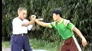 Tai Chi Master Fu Wing-fei: Applications