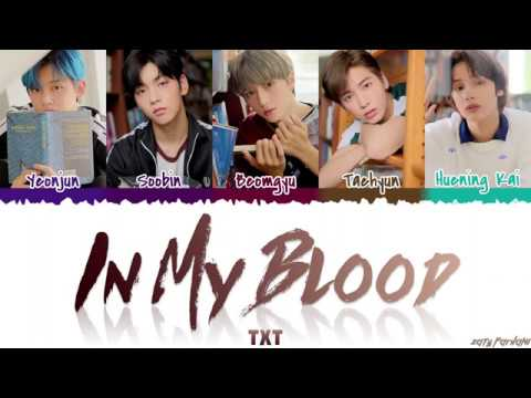 TXT - 'IN MY BLOOD' (COVER) Lyrics [Color Coded_Eng]