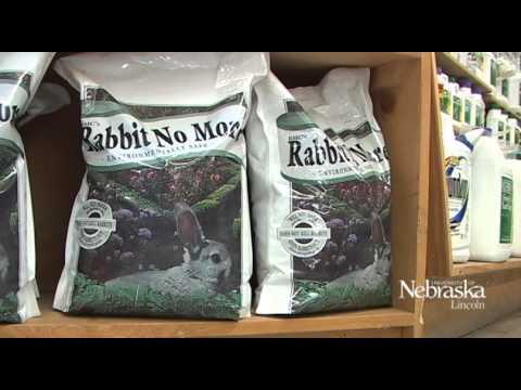 Gardening - Backyard Farmer -Rabbit Control