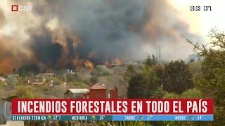 Incendios: ya afectan a 14 provincias y está llegando a las ciudades