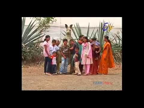 saiban ahmednagar on ETV marathi