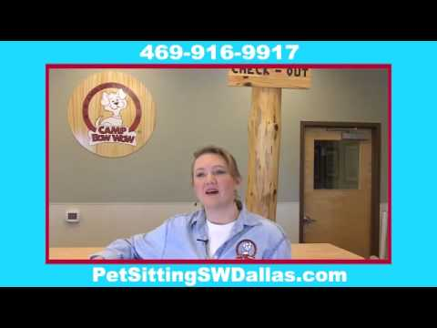 Home Pet Sitting Mansfield TX Free Consultation 469-916-9917