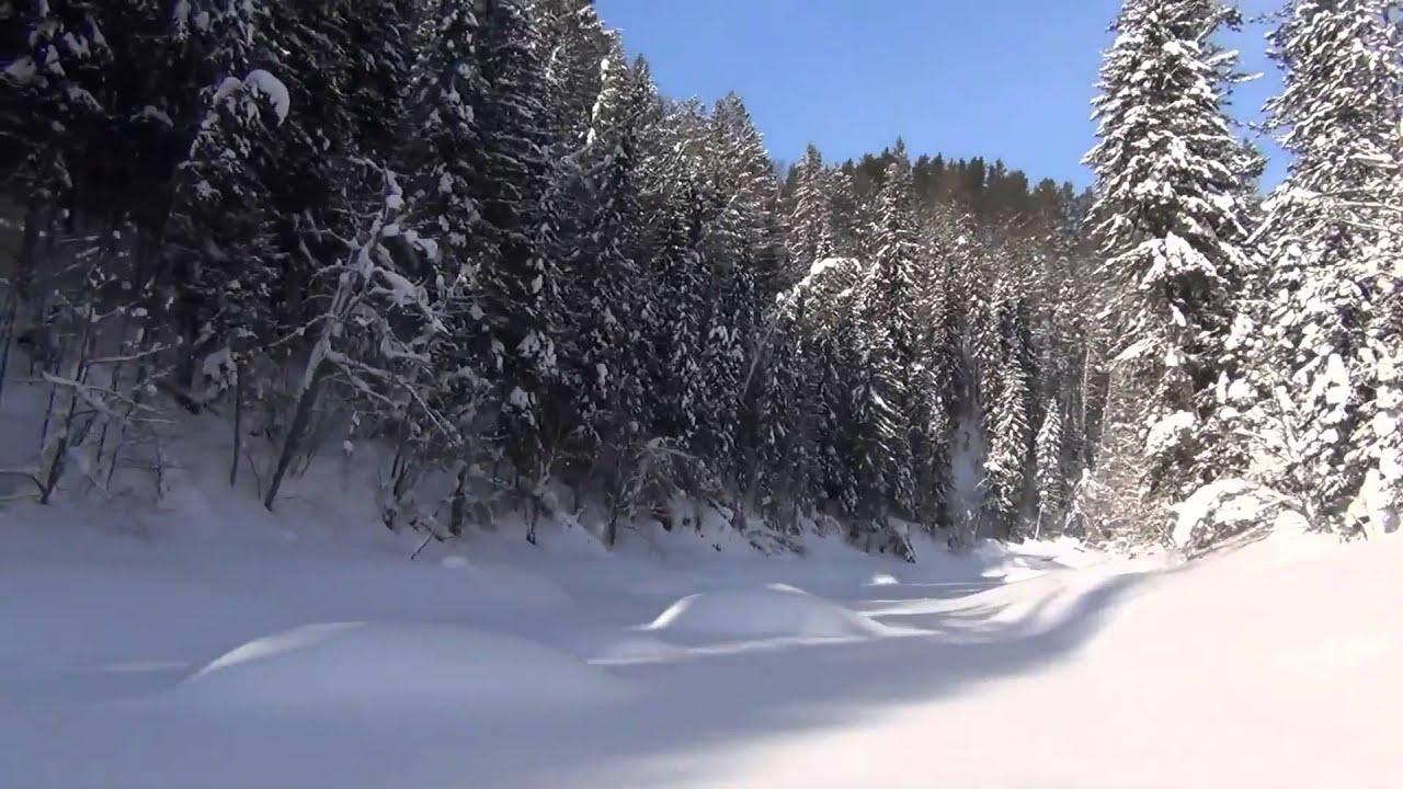 Тайга Зимняя Охота Hunting taiga / Сказочная тайга / Там где живет медведь