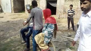 Mubarak Ho Tumko Shaadi Tumhari : farmana movie: comedy full harnavi hd
