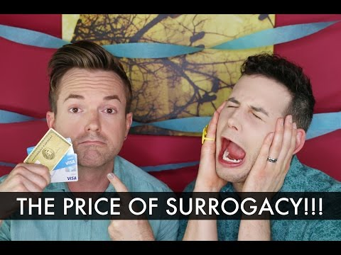 The Price of Surrogacy - Gay Dads & Twins IVF Surrogacy Journey /// McHusbands