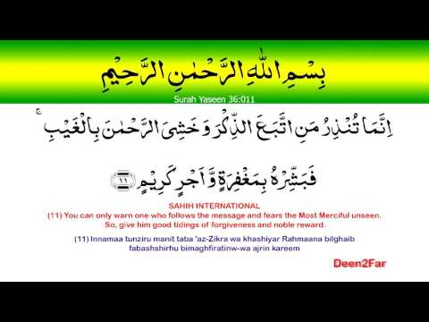 36-11 Surah Yaseen. Learn the Quran in less than 10 minutes a day