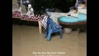 Flooding in Ban Na, Ban Na Doem, Surat Thani - Tropical Storm Pabuk (5 Jan 2019)