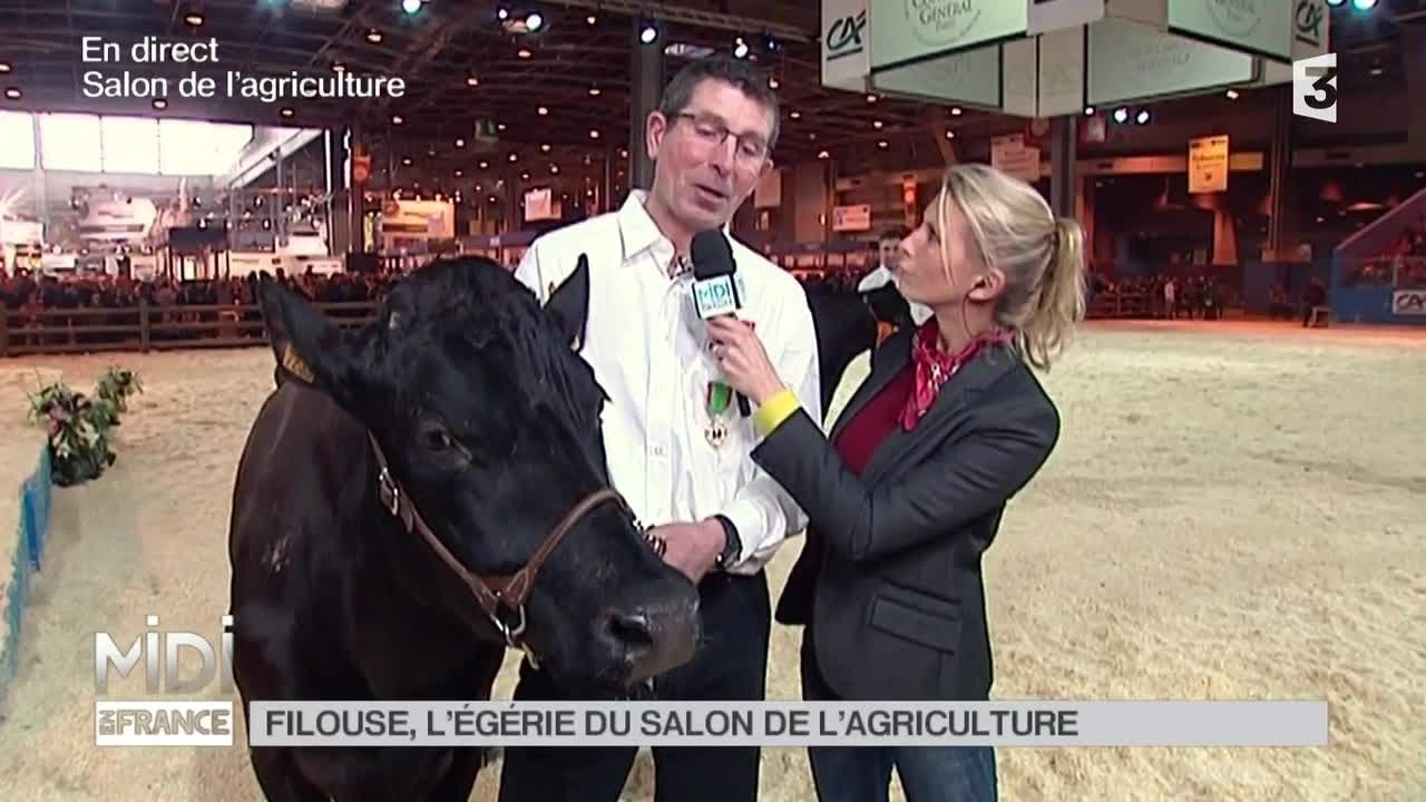 Animaux filouse l 39 g rie du salon de l 39 agriculture for Salon agriculture paris 2015