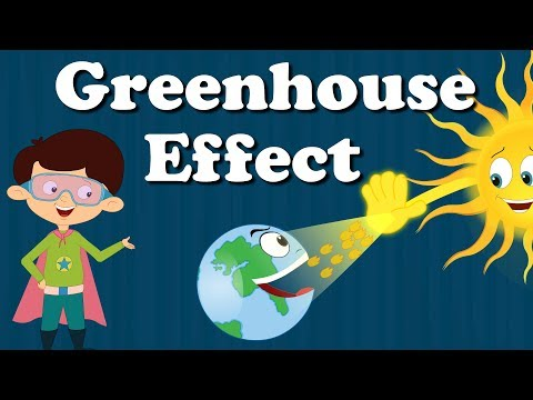 Greenhouse Effect for Kids | #aumsum #kids #education #science #greenhouse