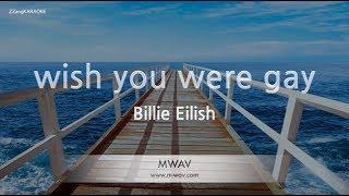 Billie Eilish-wish you were gay (Melody) (Karaoke Version) [ZZang KARAOKE]