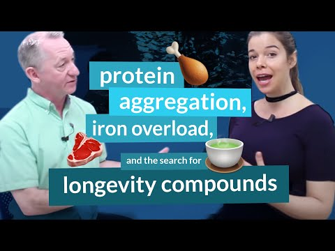 Gordon Lithgow, Ph.D. on Protein Aggregation, Iron Overload & the Search for Longevity Compounds