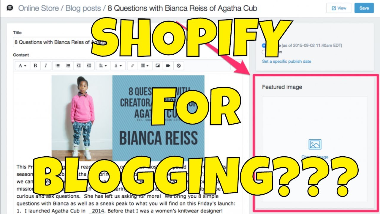 Using Shopify as a Blogging Platform Instead of Wordpress, is that Stupid?