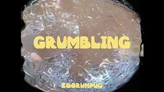 주럼퍼그 (Zoorumpug) - 투덜투덜(Grumbling) (Official MV)