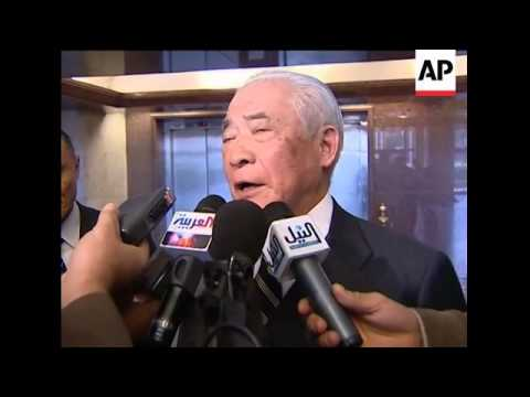 Egyptian FM meets Japanese envoy to Middle East