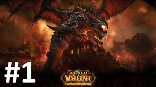 World of Warcraft: Cataclysm GAMEPLAY - Human Paladin on Duskwood map