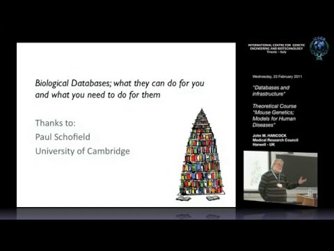 J. M. Hancock - Databases and infrastructure